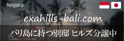 EXA-HILLS